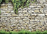 Фотофон виниловый, Каменная стена, трава