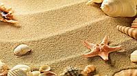 Фотофон виниловый,Морской песок, ракушки