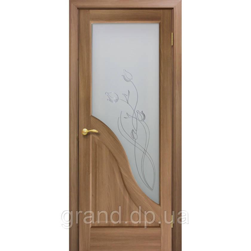Двери межкомнатные Габриэлла СС+КР остекленная с контурным рисунком, цвет дуб золотой