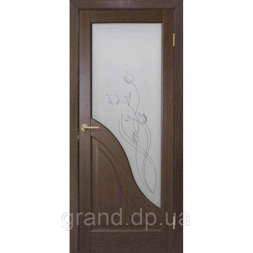 Двери межкомнатные Габриэлла СС+КР остекленная с контурным рисунком, цвет каштан