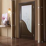 Двери межкомнатные Габриэлла СС+КР остекленная с контурным рисунком, цвет каштан, фото 2