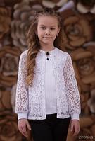 Шкільна блузка для дівчинки: 3629-1