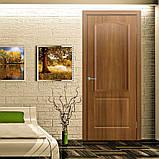 Двери межкомнатные Омис Классика ПГ ПВХ глухая, цвет ольха европейская, фото 2