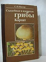 Съедобные и ядовитые грибы Карпат