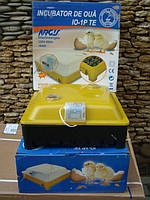 Инкубатор Borotto - 60 яиц с вмонтированным вентилятором и мехаическим переворотом (Румыния)