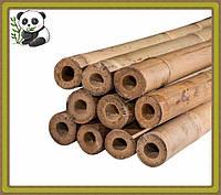 Бамбуковый ствол, опора, д.1,6-1,8 см, длина 2,10 м