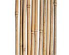 Бамбуковый ствол, опора, д.1,6 см +/-, длина 1,50 м, фото 3