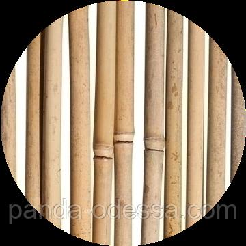 Бамбуковые опоры для растений