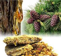 Живица сосновая(смола сосны) 50 гр