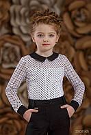 Шкільна блузка для дівчинки: 3625-1