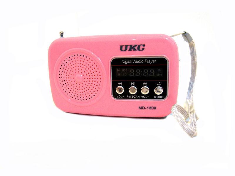 Портативная колонка с радио WS-1300