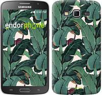 """Чехол на Samsung Galaxy Grand 2 G7102 Банановые листья """"3078c-41"""""""