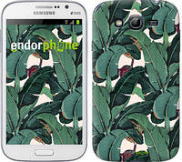 """Чехол на Samsung Galaxy Grand I9082 Банановые листья """"3078c-66"""""""