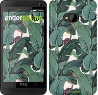 """Чехол на HTC One M7 Банановые листья """"3078c-36"""""""