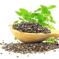 Семена чиа оптом, 1 кг