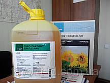 Гербицид Евро-Ланг р.к. 5 л (имазетапир 100 г/л+биоактиватор НН21)