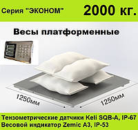 Платформенные весы 1250х1250, 2000 кг, Эконом.