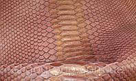Питон Куртус бордо с золотом, фото 1