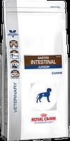 Royal Canin  Gastro Intestinal Junior 10кг-диета для щенков при нарушении пищеварения