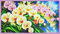 Набор для вышивания бисером Орхидеи в саду
