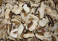 Сушка белый гриб