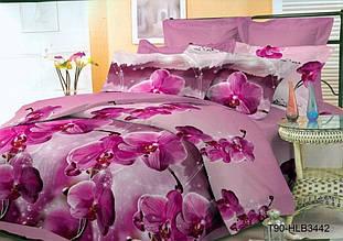 Простыня Поликоттон, расцветки в ассортименте (Евро)