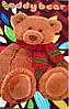 Микрофибровая простынь, покрывало TRUE LOVE полуторное Мишка Тедди, фото 2