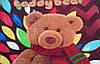 Микрофибровая простынь, покрывало TRUE LOVE полуторное Мишка Тедди, фото 3