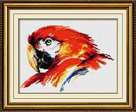 """Набор для рисования камнями (холст) """"Красочный попугай"""" LasKo TT027"""