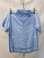 Детская рубашка для мальчика (92 - 116 см) купить оптом в Украине 7км