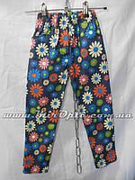 Детские брюки для девочки (92 - 116 см) купить оптом со склада 7км