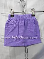 Детские шорты для девочки (92 - 116 см) купить оптом со склада 7км