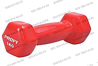 Гантель М 0289, металл с виниловым покрытием, шестигранная, вес 1 кг, 3 цвета