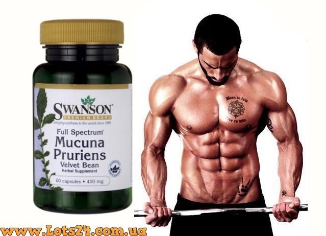 Mucuna Pruriens - Повышает Тестостерон и Гормон Роста — в ...