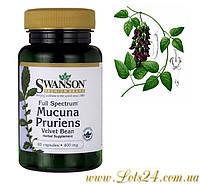 Мукуна Жгучая - повышает потенцию, усливате либидо, сжигает жир, растит мышцы
