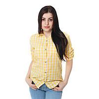 Рубашка женская gisrA Р05