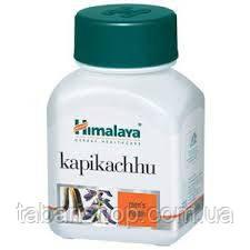 Капикачу, Kapikachhu  №60