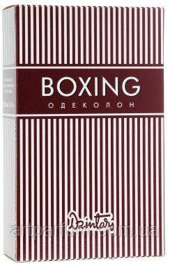 Dzintars Boxing