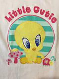 Майка и трусы детские на девочку Looney Tunes , 4-6 лет, фото 3