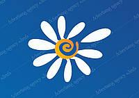 Картинка Цветок ромашка, векторный клипарт, логотип день семьи.