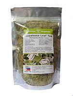 Чай из листьев Гуанабана (гравиола). От рака и для щитовидки. ОРИГИНАЛ! Сертификат!, фото 1