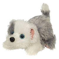 Інтерактивна іграшка щеня Furreal Friends Snuggimals Snug-A-Floppy Sheepd