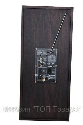 Акустическая система USBFM-68DC!Акция, фото 2