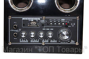Акустическая система USBFM-69DC!Акция, фото 2