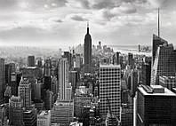 Фотообои черно-белые Нью-йорк  размер 368 х 254 см
