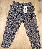 Cултанки штаны БАТАЛ  женские цветные KENALIN врезные карманы и снизу манжеты (разные рисунки) ЛЖЛ-19