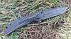 Нож складной FL 14096 Pirat, фото 2