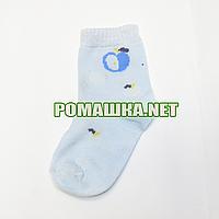 Детские летние носки  р. 104-110 для мальчика 80% хлопок 15% полиамид 5% бамбук 3713 Голубой