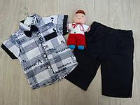 """Набор """"Manhattan"""" двойка с шортами + бабочка для мальчика р.2"""