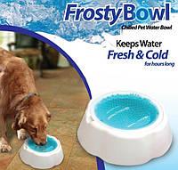 Охлаждающая Миска для Воды для Домашних Питомцев Frosty Bowl с Охлаждающим Гелем
